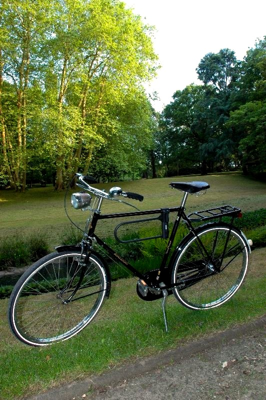 """Cherche forum vélos """"vintage"""" DSC_0002raleigh"""